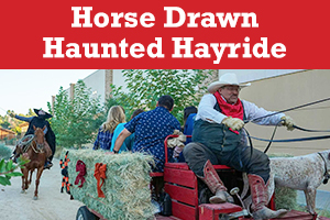 AMR_Blog_Graphics_hayride (002)