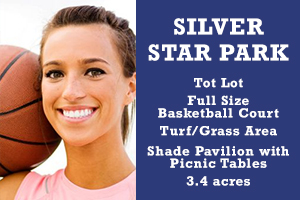 AMR_Blog_Graphics_silverstarpark